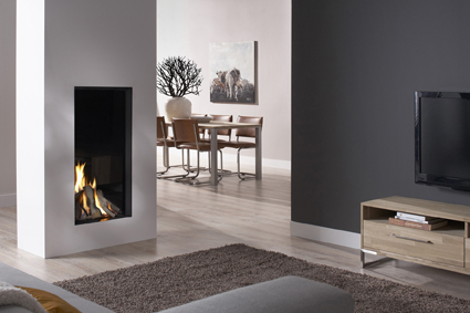 DRU Excellence 50XT balanced flue gas fire